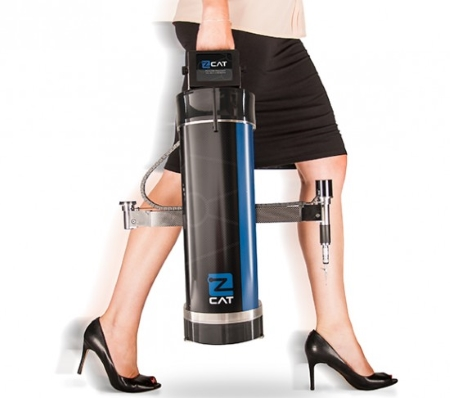 zCat-legs